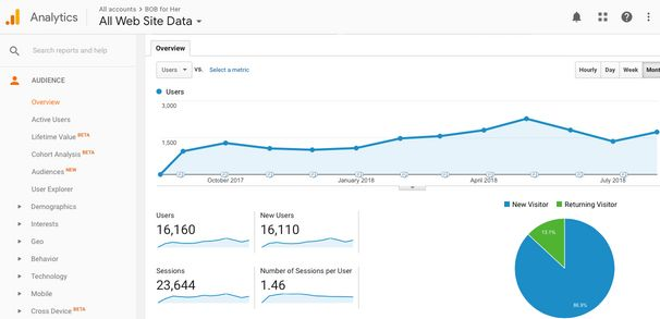 Audience Overview _ Google Analytics Tutorial