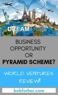 World Ventures Inc Review