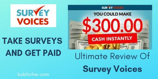 Review Of Survey Voices