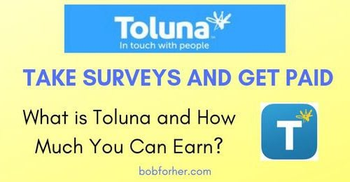 What Is Toluna Survey