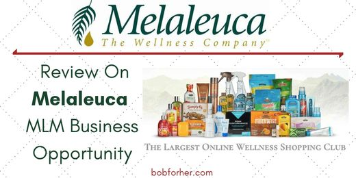 Review On Melaleuca Business Opportunity